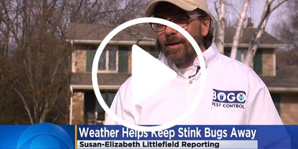 Residential Pest Control in Stillwater, MN